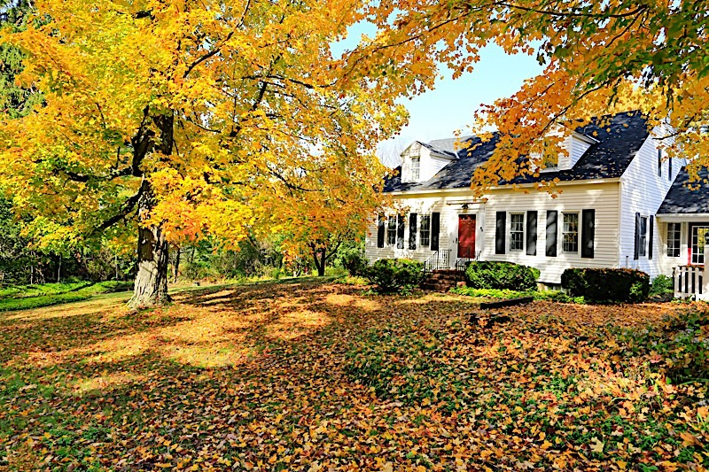 Fall real estate market trends worth keeping an eye on for Real estate market trends